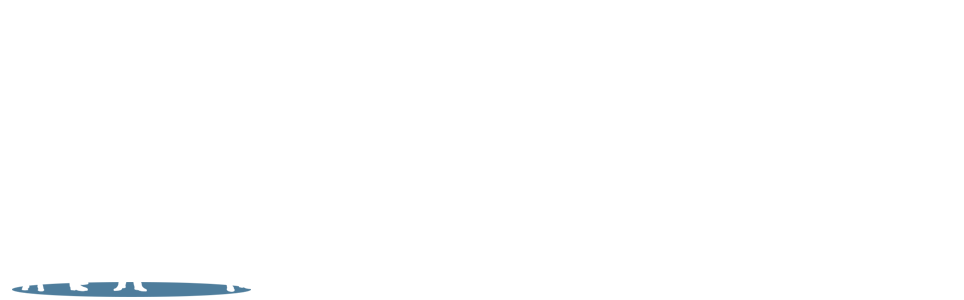 Employment Offers by Prodigy
